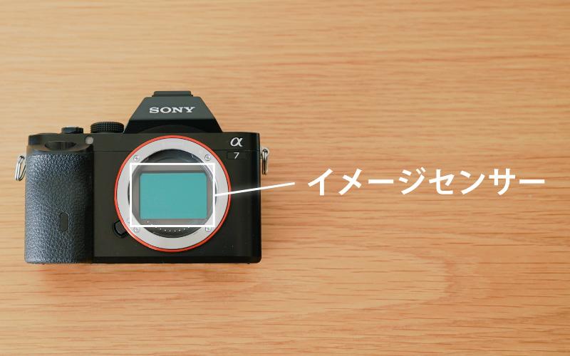 ミラーレスカメラのイメージセンサーとは