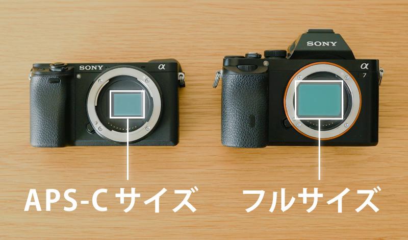 イメージセンサーのサイズの違い